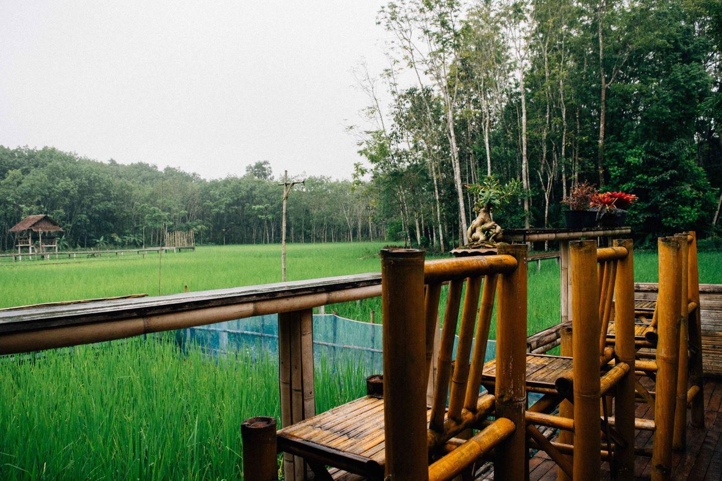 4.-ไร่เกษมสุข-นครศรีธรรมราช เป็น-Cafe-สวยๆ-ในจุดท่องเที่ยวเชิงเกษตรผสมผสานวิถีชีวิตที่พอเพียง-ร้านมีจุดเด่นเป็นสะพานไม้ไผ่ยื่นไปในทุ่งนา-ได้บรรยากาศของวิถีธรรมชาติ-เรียบง่ายครับ คาเฟ่สวย,วิวหลักล้าน,นครศรีธรรมราช,รวมcafe,คาเฟ่,ร้านอาหาร,ร้านกาแฟ,ภูเขา