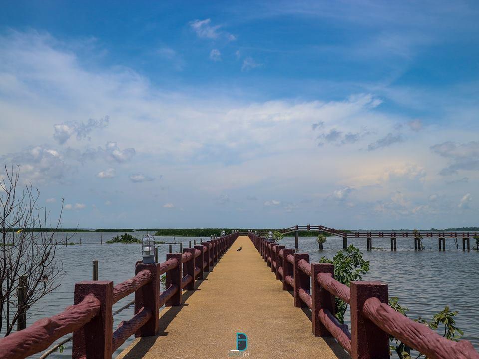 8.-ทะเลน้อย-พัทลุง-สวยงามจริงๆเหมาะแก่การถ่ายรูปมากมายครับ- พัทลุง,กิน,เที่ยว,จุดเช็คอิน,จุดถ่ายรูป,แหล่งท่องเที่ยว