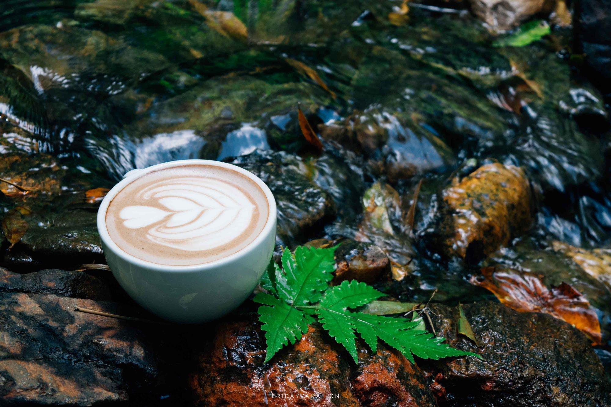 จิบกาแฟชิวๆริมน้ำ  ภูเก็ต,สถานที่ท่องเที่ยว,ของกิน,จุดเช็คอิน,ที่เที่ยว,จุดถ่ายรูป