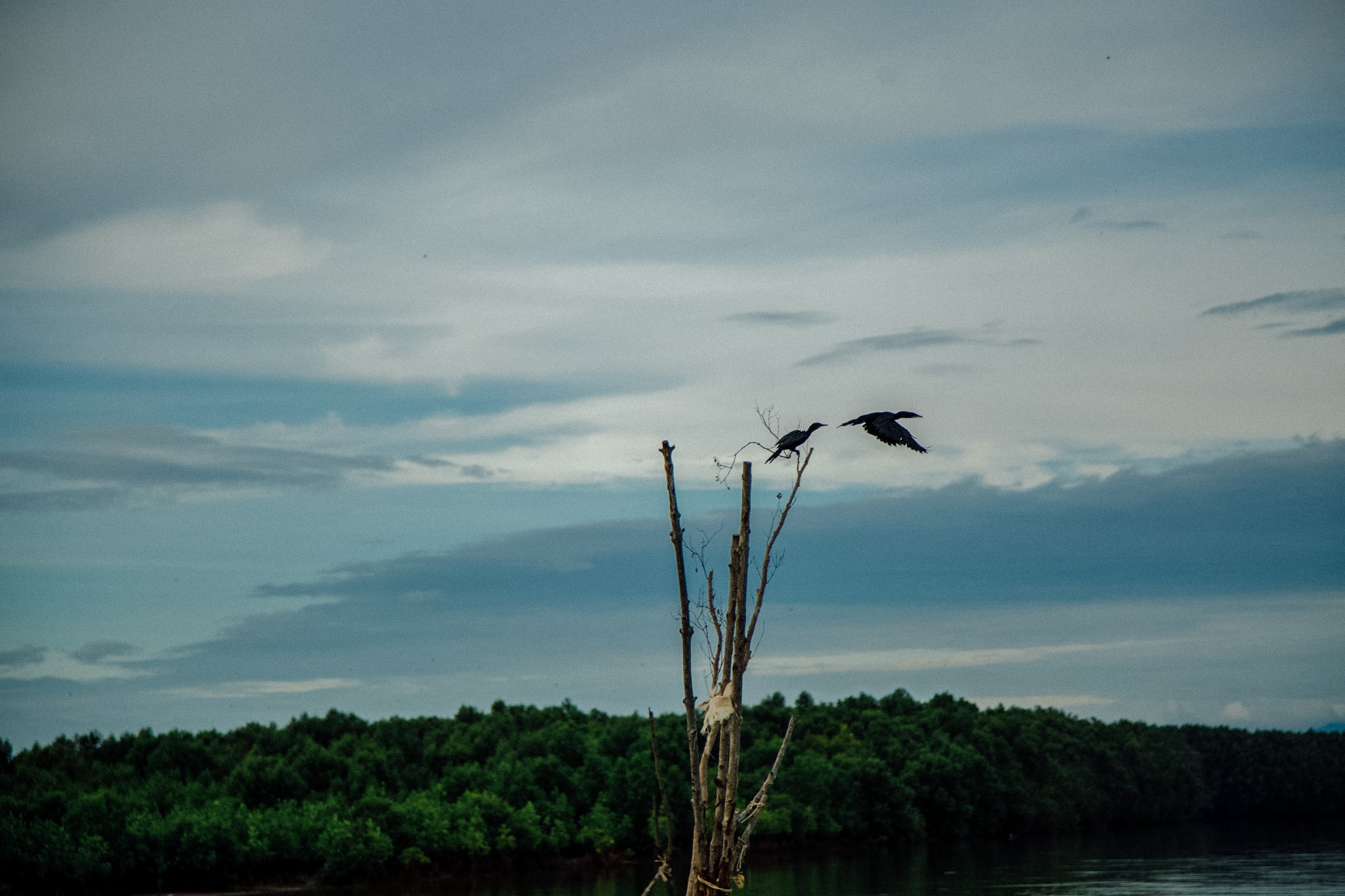 ธรรมชาติ,ลำธาร,ป่าเขา,นครศรีธรรมราช,เมืองคอน,รวมรีวิว,จุดเช็คอิน