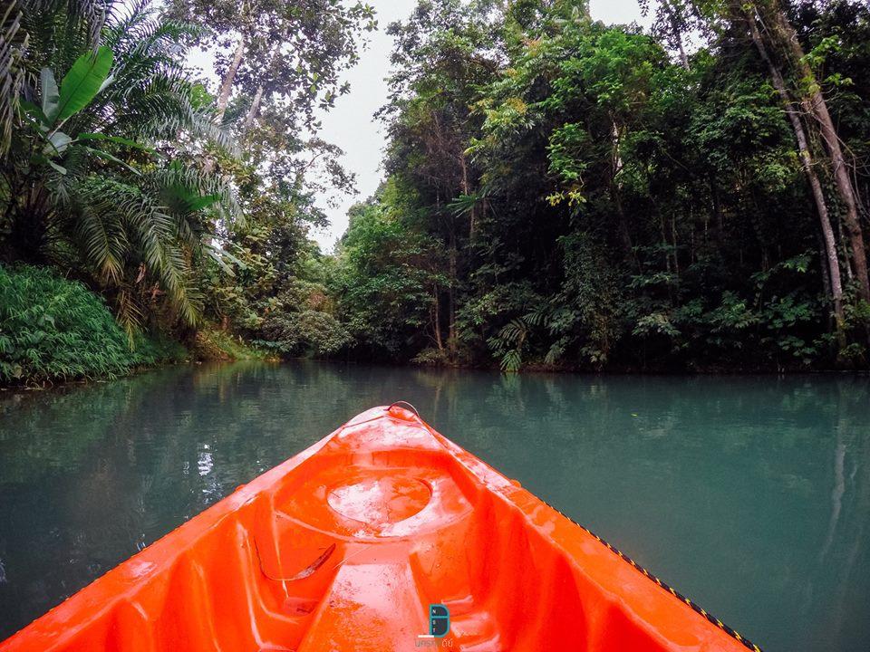 มีพายเรือด้วยครับ-ชิวกันไป  ธรรมชาติ,ลำธาร,ป่าเขา,นครศรีธรรมราช,เมืองคอน,รวมรีวิว,จุดเช็คอิน