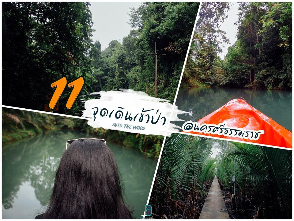รวมที่เที่ยวธรรมชาติ 2564 ลำธาร ป่าเขา นครศรีธรรมราช วันหนึ่งฉันเดินเข้าป่า