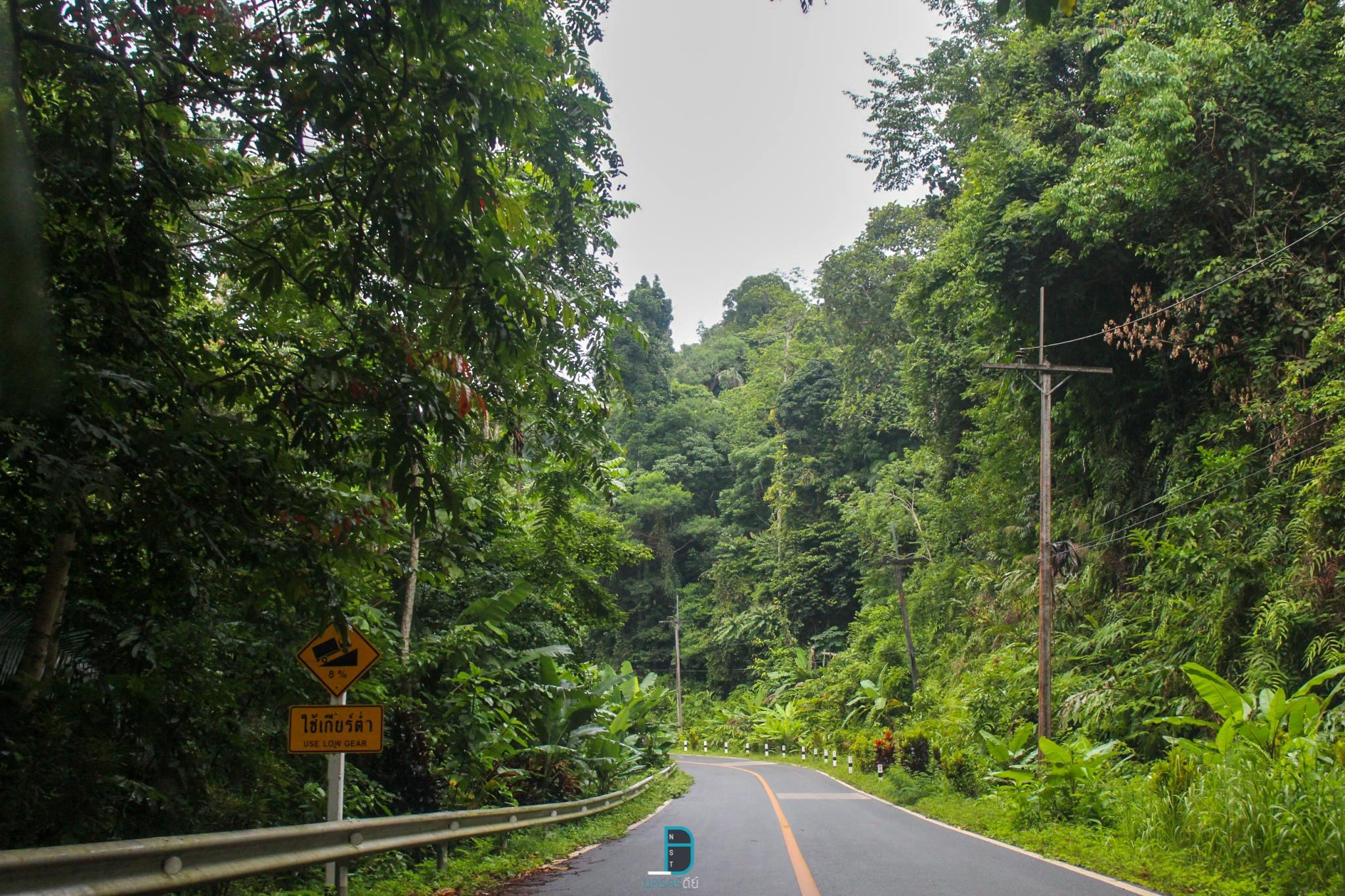 มีเส้นทางป่าเขาเขียวสวยๆ-ให้ขับรถเล่นผจญภัยสูดอากาศกันครับ-จะขับแบบเปิดกระจกหรือไม่เปิดกระจกก็ฟินเหมือนกันครับ พิกัด-:-ตำบลน้ำตก-ทุ่งสง นครศรีธรรมราช,มีอะไรบ้าง,สถานที่ท่องเที่ยว,ร้านอร่อย,ของกิน