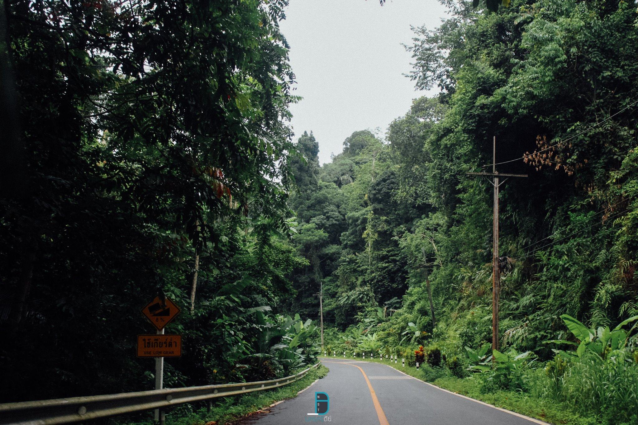 แถมนิดนึงคือเส้นทางระหว่างทางที่ก่อนจะไปถึง-บ้านสวนทองคำโฮมสเตย์-คือสวยมากๆครับ-อยากให้ทุกคนได้ไปชมกัน  ธรรมชาติ,ลำธาร,ป่าเขา,นครศรีธรรมราช,เมืองคอน,รวมรีวิว,จุดเช็คอิน