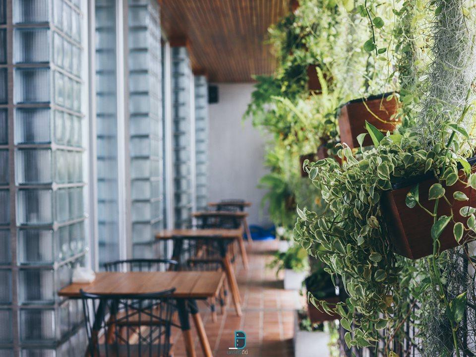 มีสีเขียวของต้นไม้อยู่ทั่วโรงแรมปะปันความเป็นธรรมชาติ  สถาปัตยกรรมร่วมสมัย,อำเภอเมือง,นครศรีธรรมราช,rooftop,การออกแบบ,ที่พัก,โรงแรม