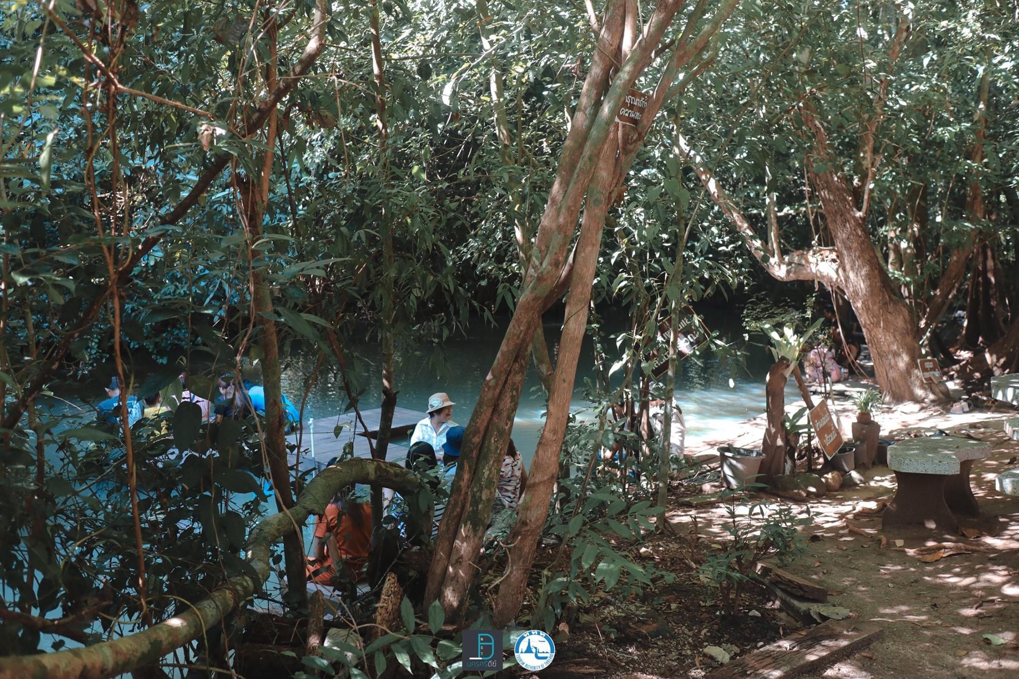 8.-สวนตาสรรค์-แหล่งเช็คอินยอดฮิตที่ได้ชื่อว่า-สปาปลาตอดครับ-ปกติน้ำจะใสมากแต่แอดมาวันนี้ฝนตกครับเลยขุ่นๆหน่อย นครศรีธรรมราช,จุดเช็คอิน,ที่ท่องเที่ยว,ของกิน,โกโก้,TAT,การท่องเที่ยวแห่งประเทศไทย